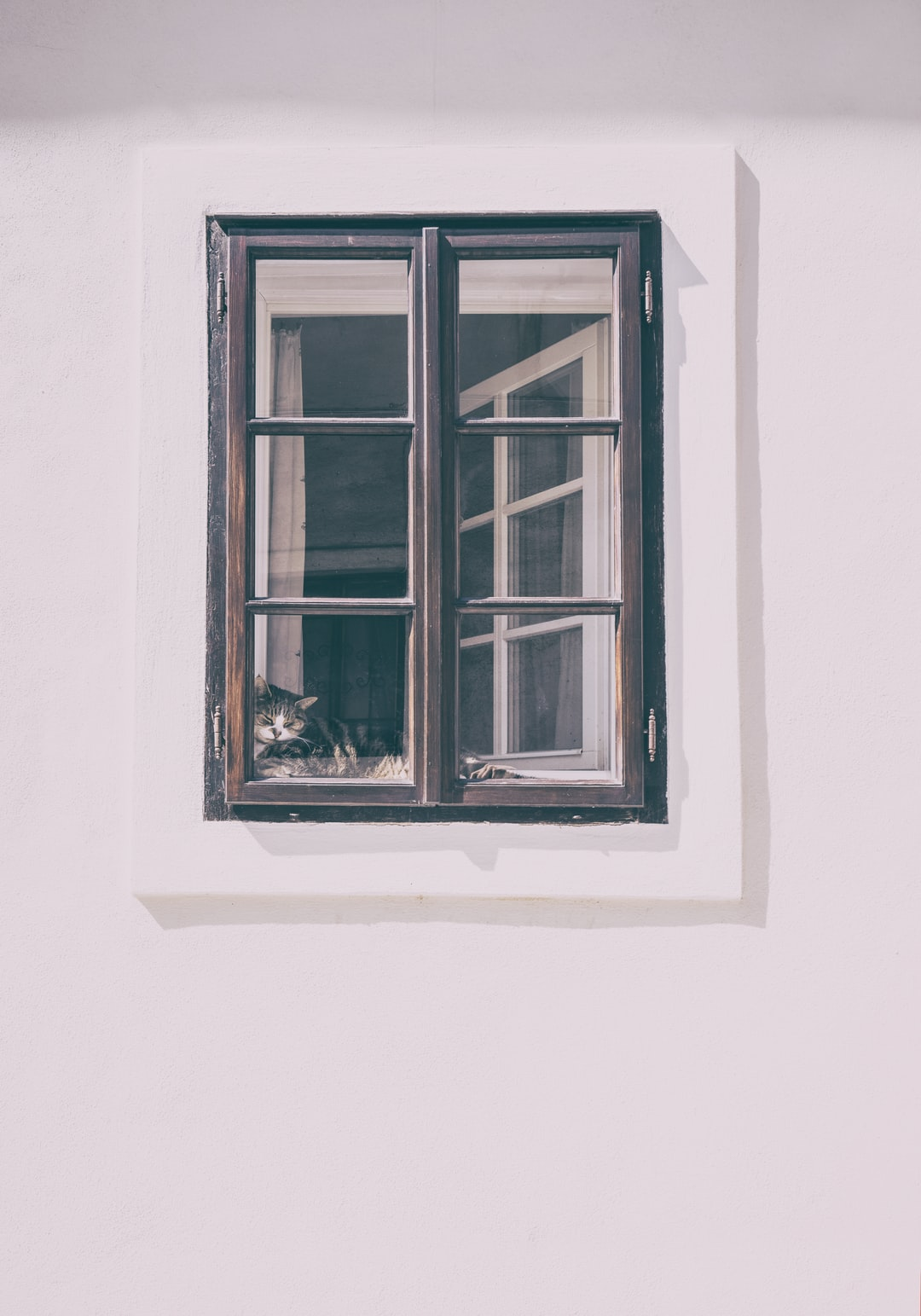 Window frame pictures download free images on unsplash - Sprossenfenster innenliegende sprossen ...