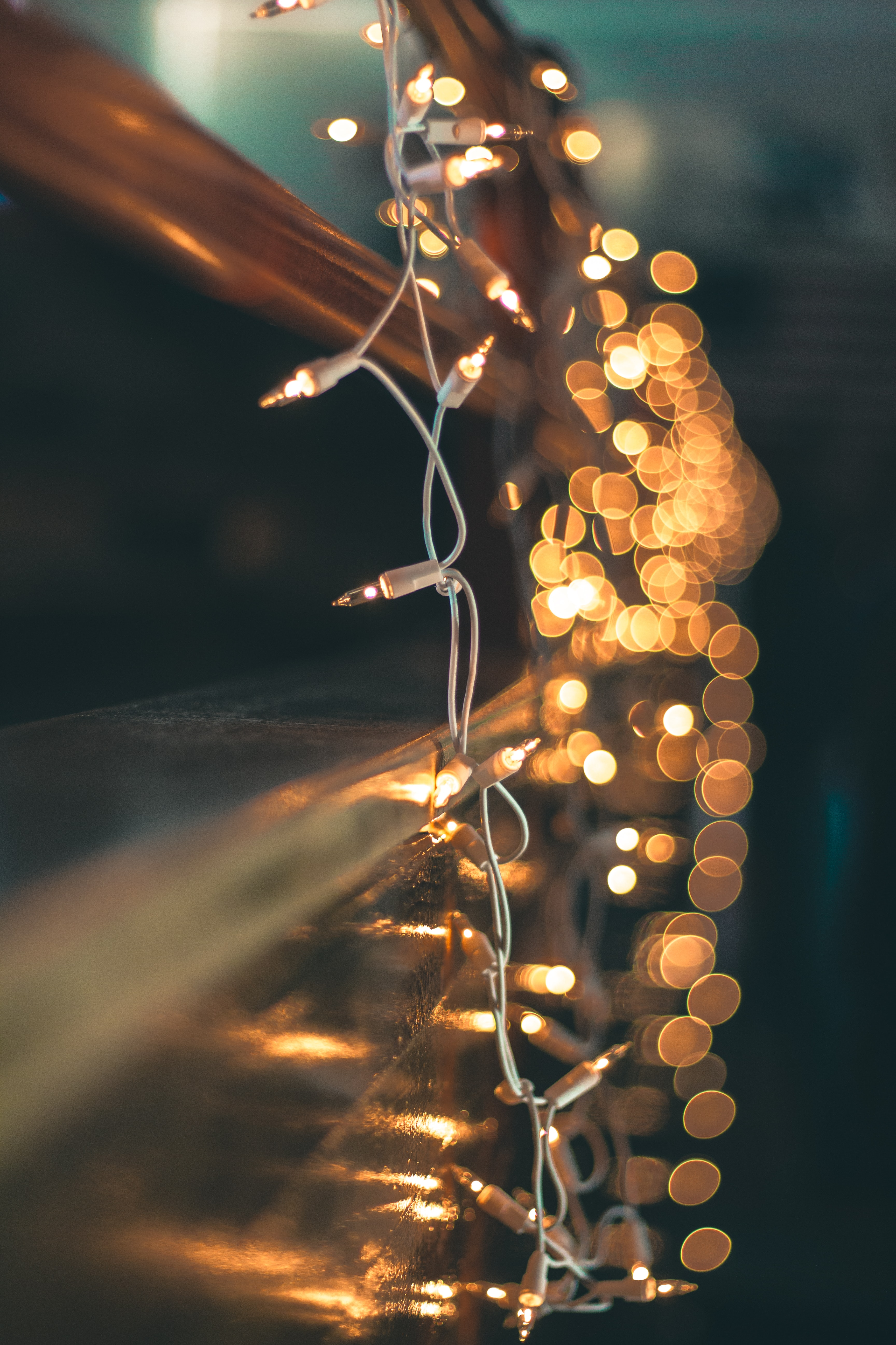 20 Best Free Fairy Lights Pictures On Unsplash