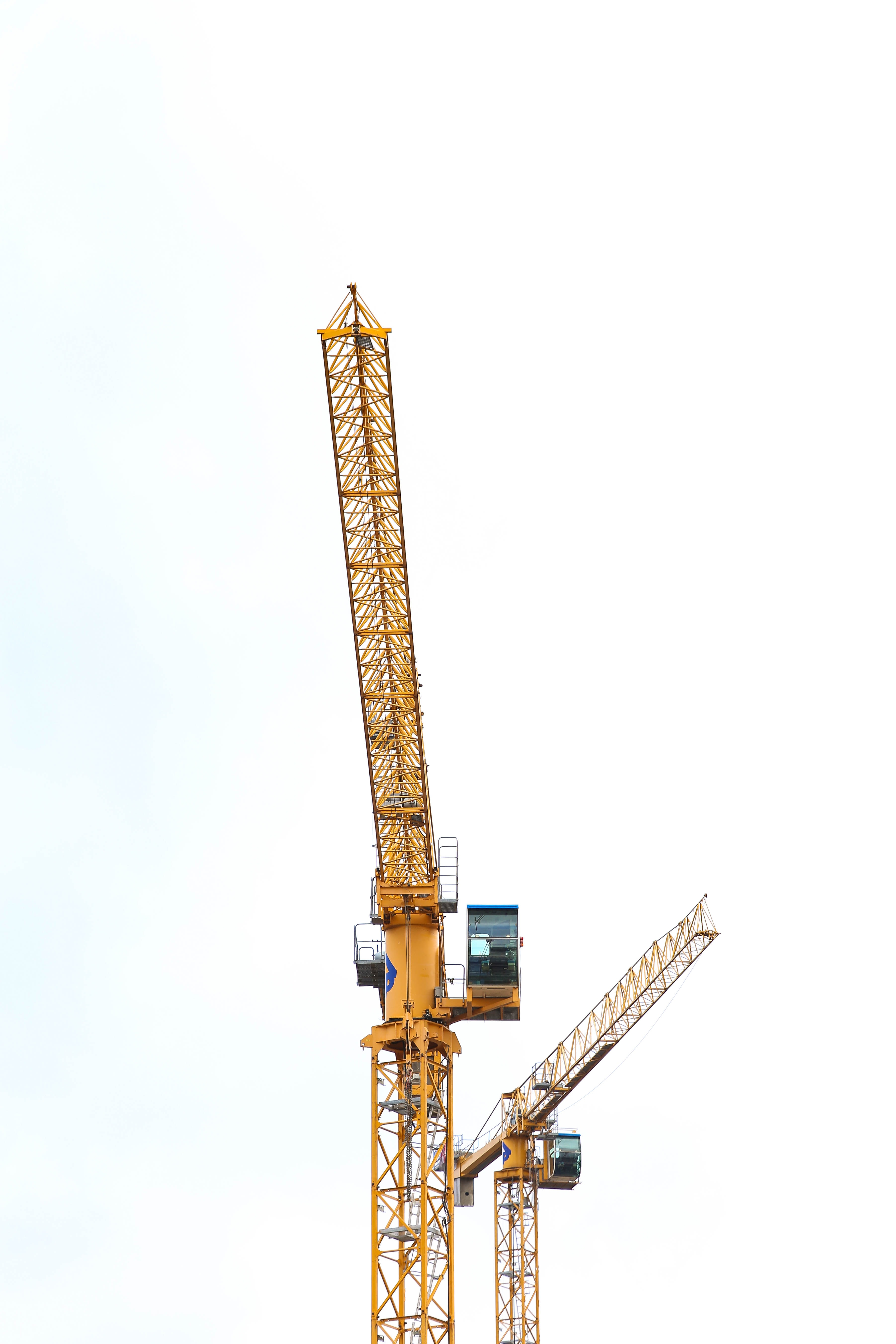 Crane Pictures 500+ crane pictures | download free images on unsplash