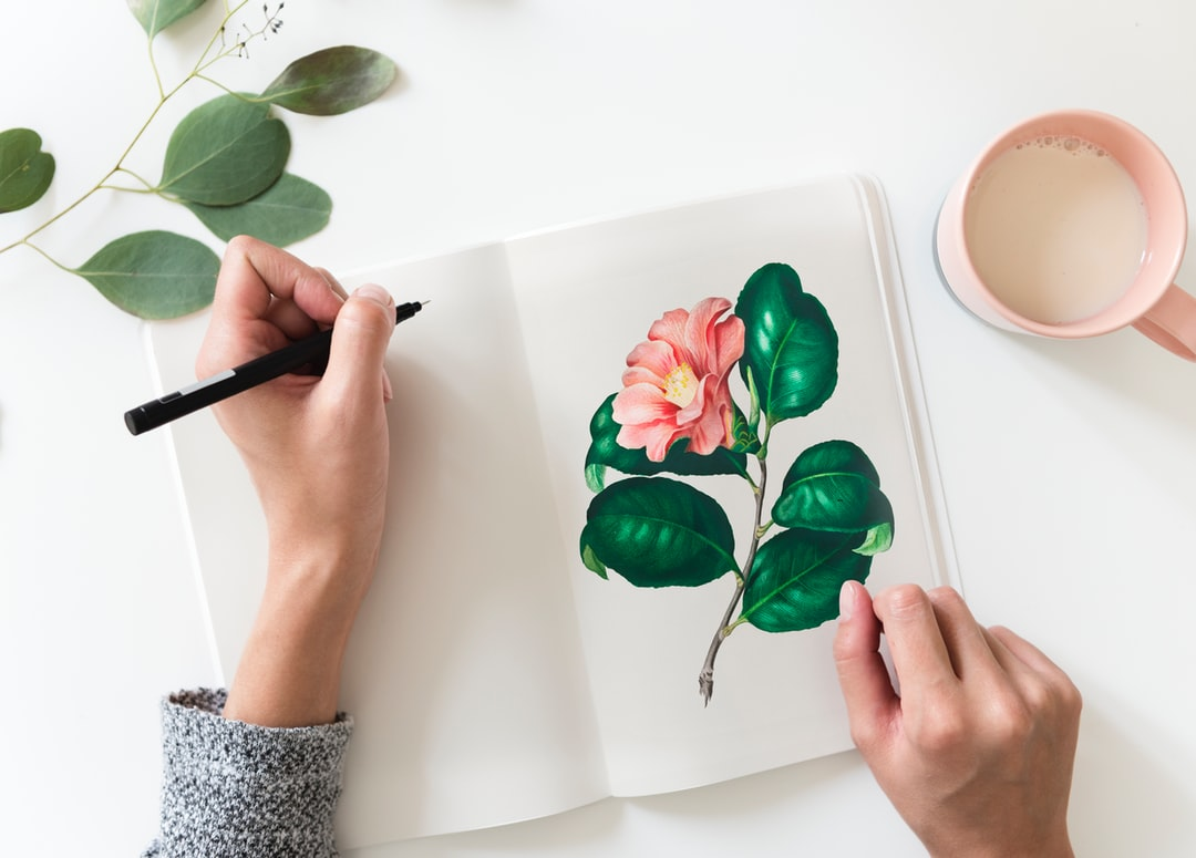 Drawing Pictures Hd Download Free Images On Unsplash