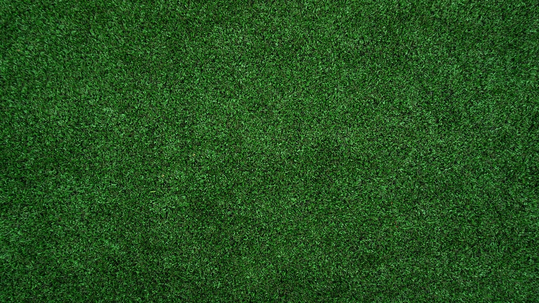 Topview Of Grass Lawn Photo Free Grass Image On Unsplash