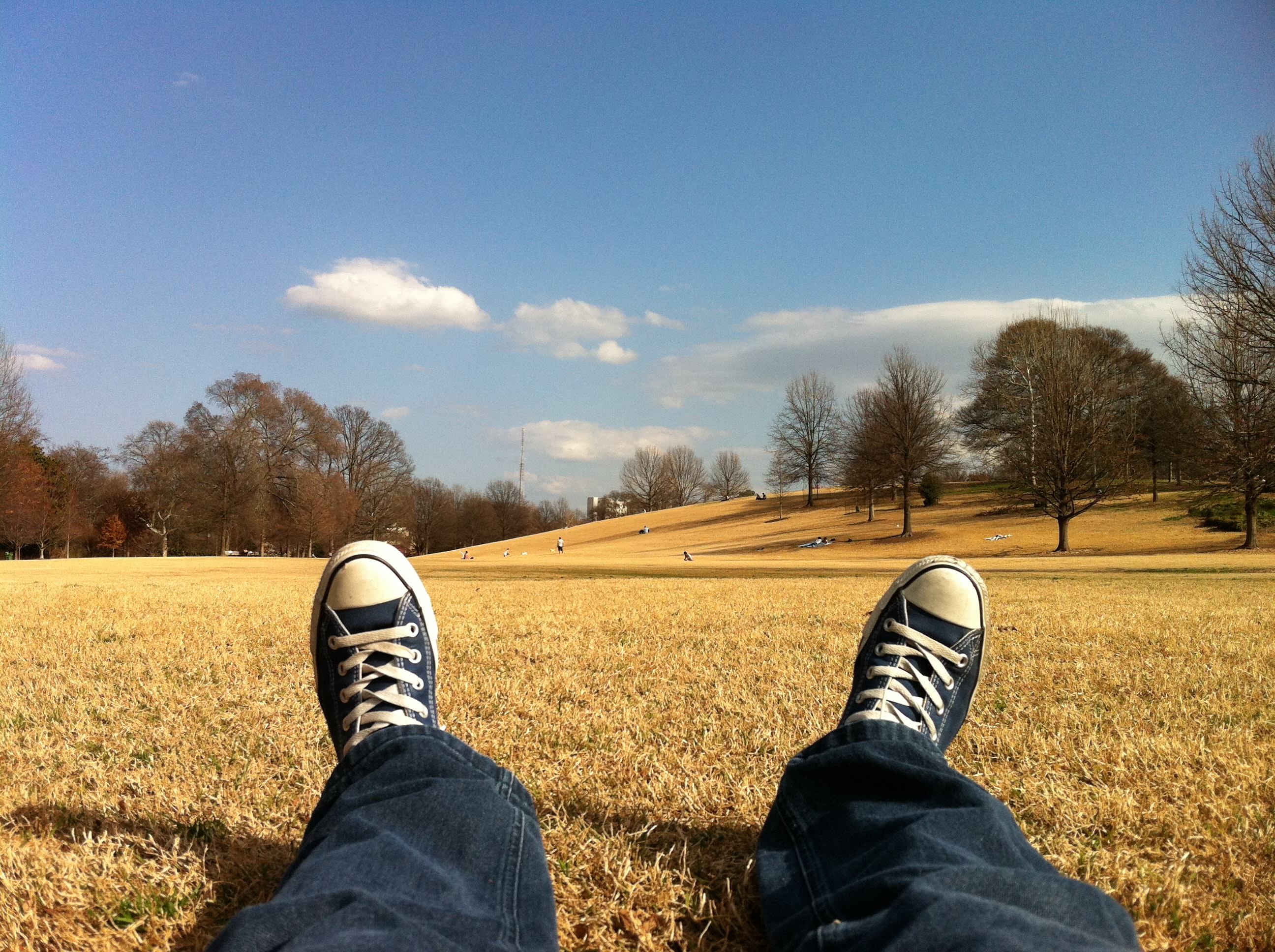 A person wearing jeans and converse relaxing on grass in a park
