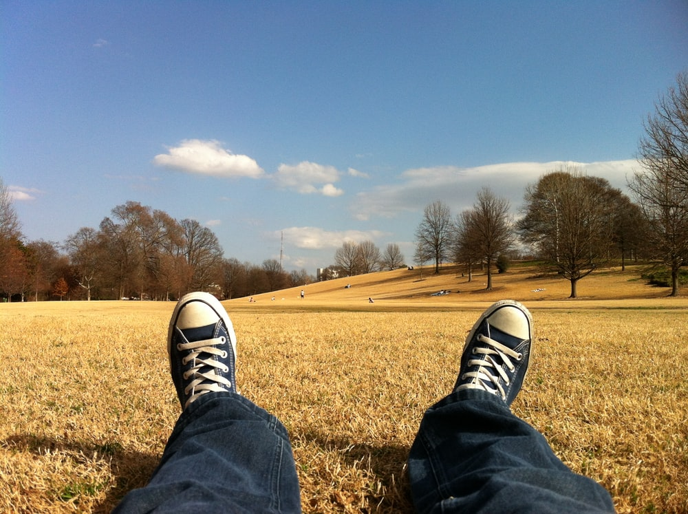person wearing blue-and-white Converse All Star shoes while sitting on brown grass photo at daytime