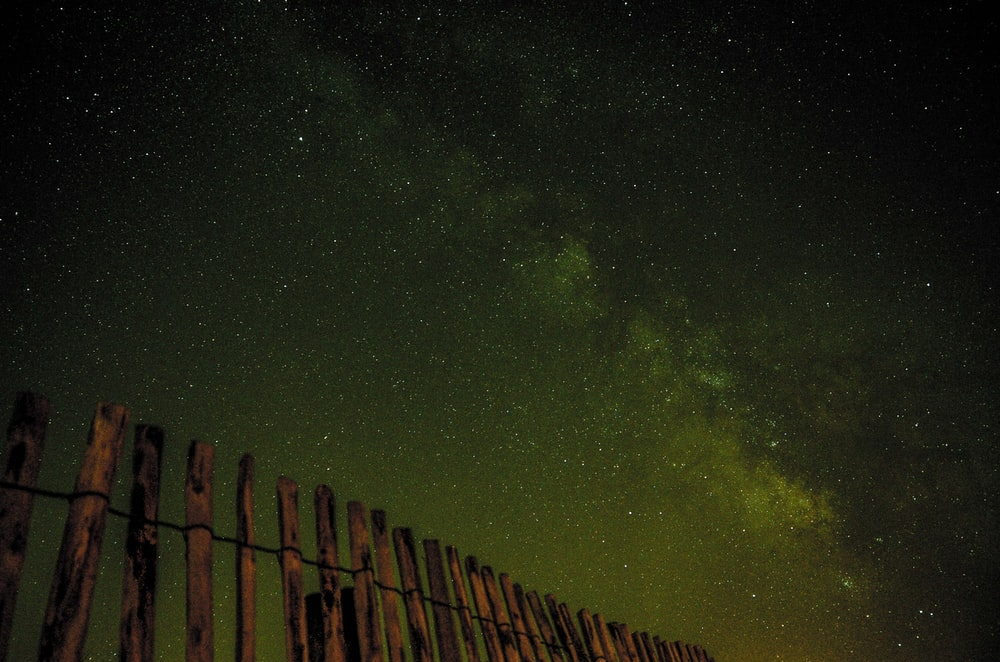 worm's-eye photography of starry night