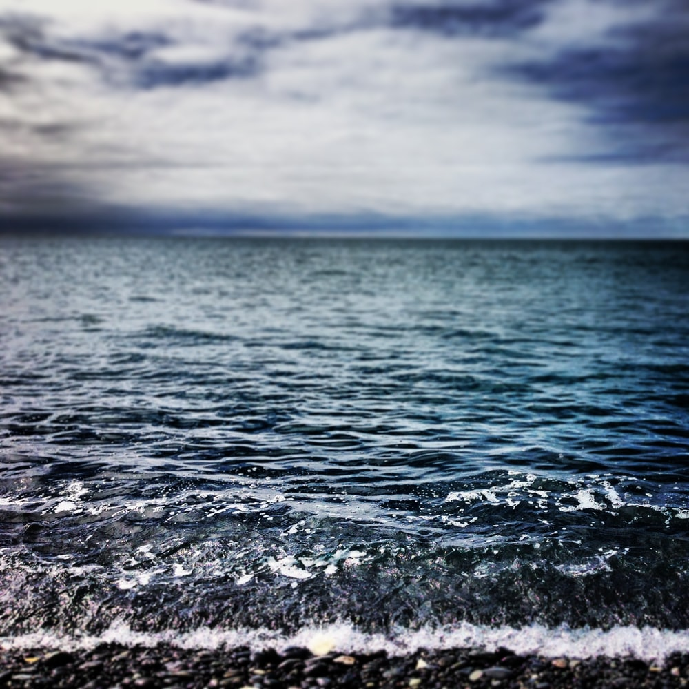 close up photography of calm body of water