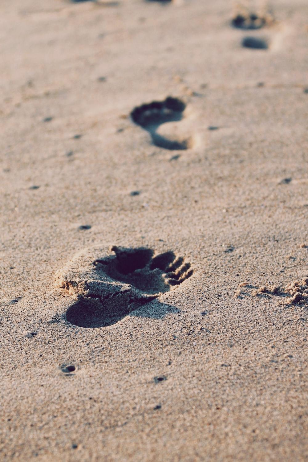 foot prints on beach sand