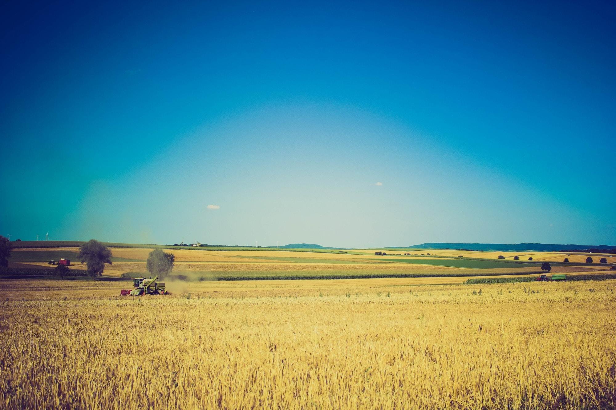 全球四大农业产品巨头合作,借助区块链推行粮食贸易数字化