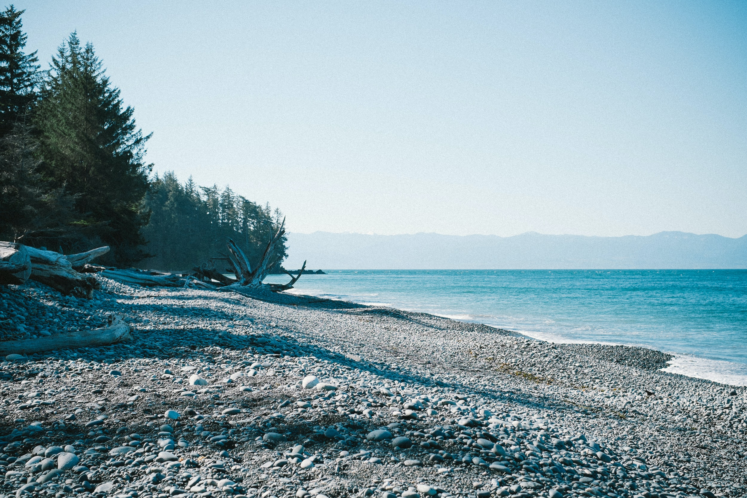 A white pebble beach next to an evergreen forest by azure water