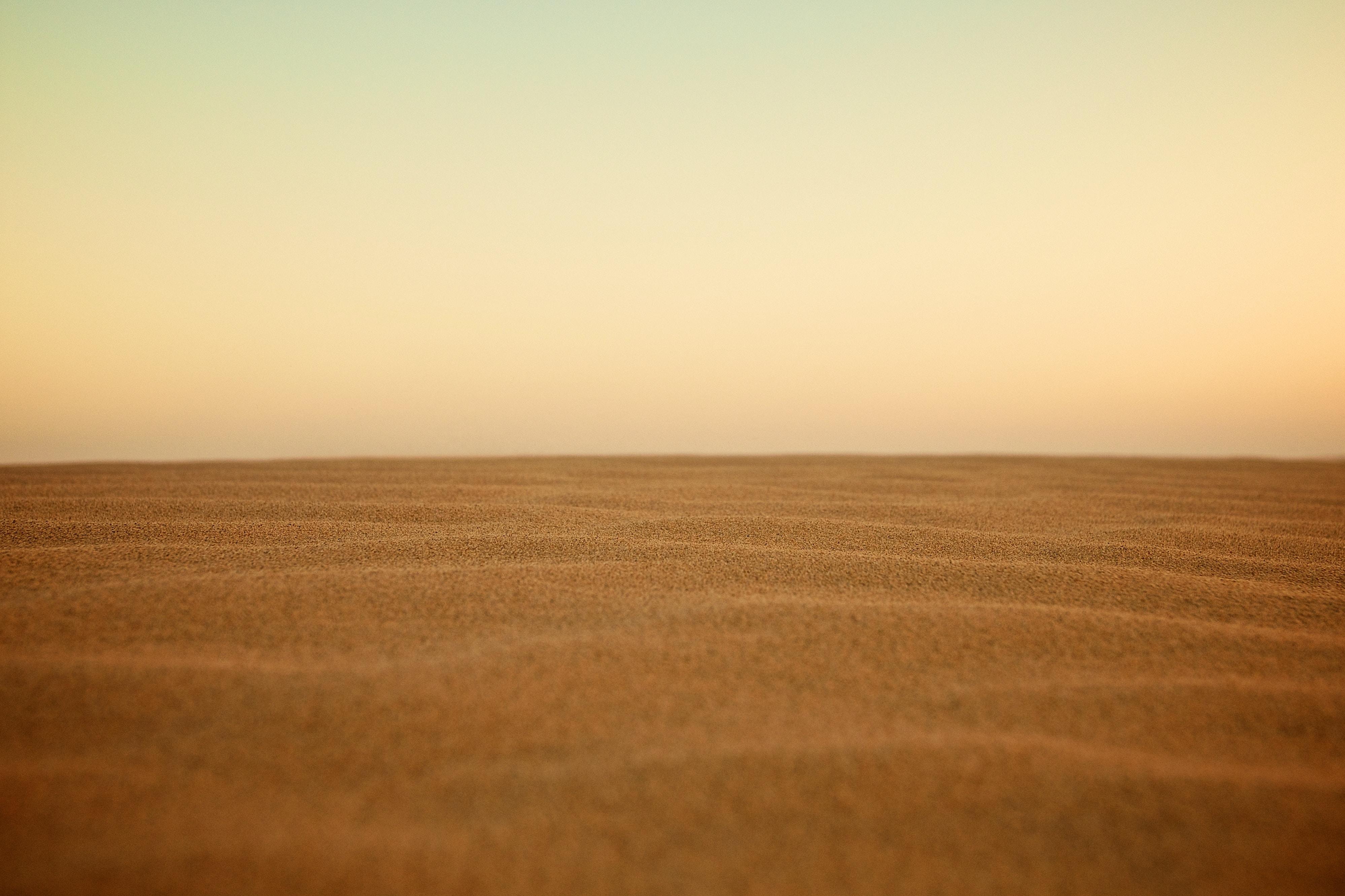 pustynia; źródło: Unsplash