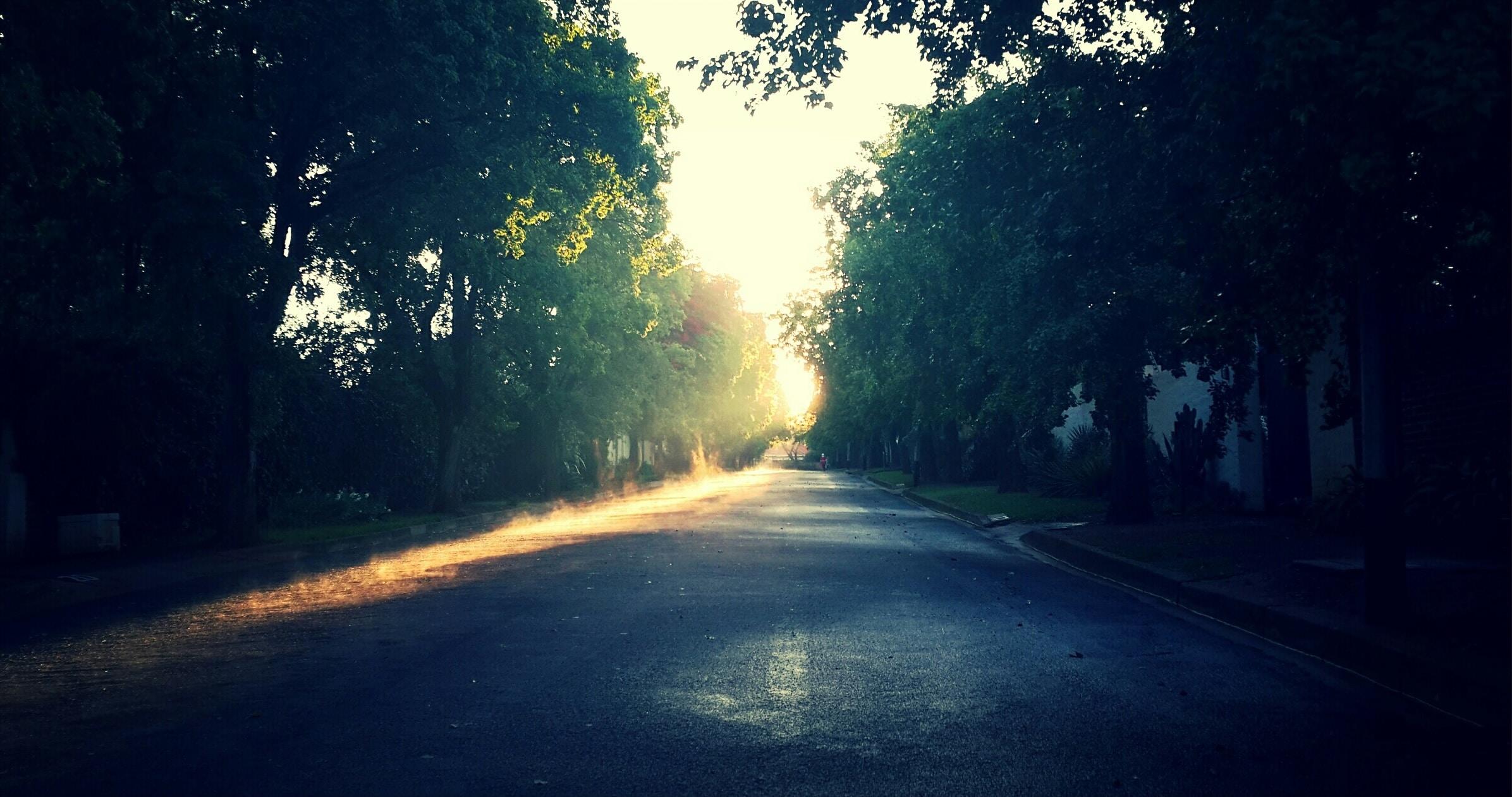 low-light photo of gray pavement