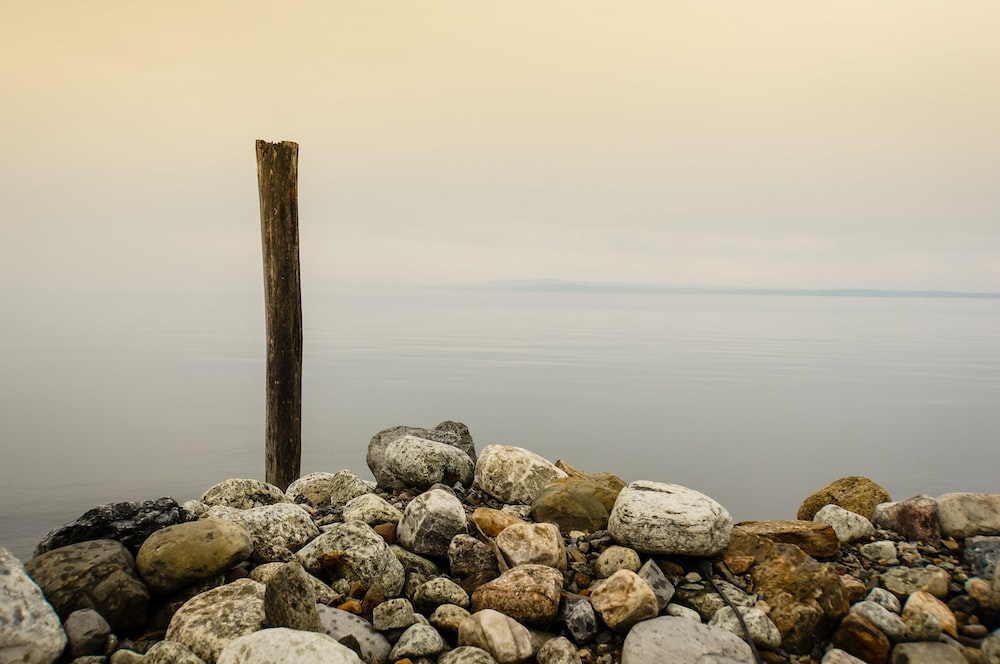 stones and brown wooden stick near body of water under cloudy sky