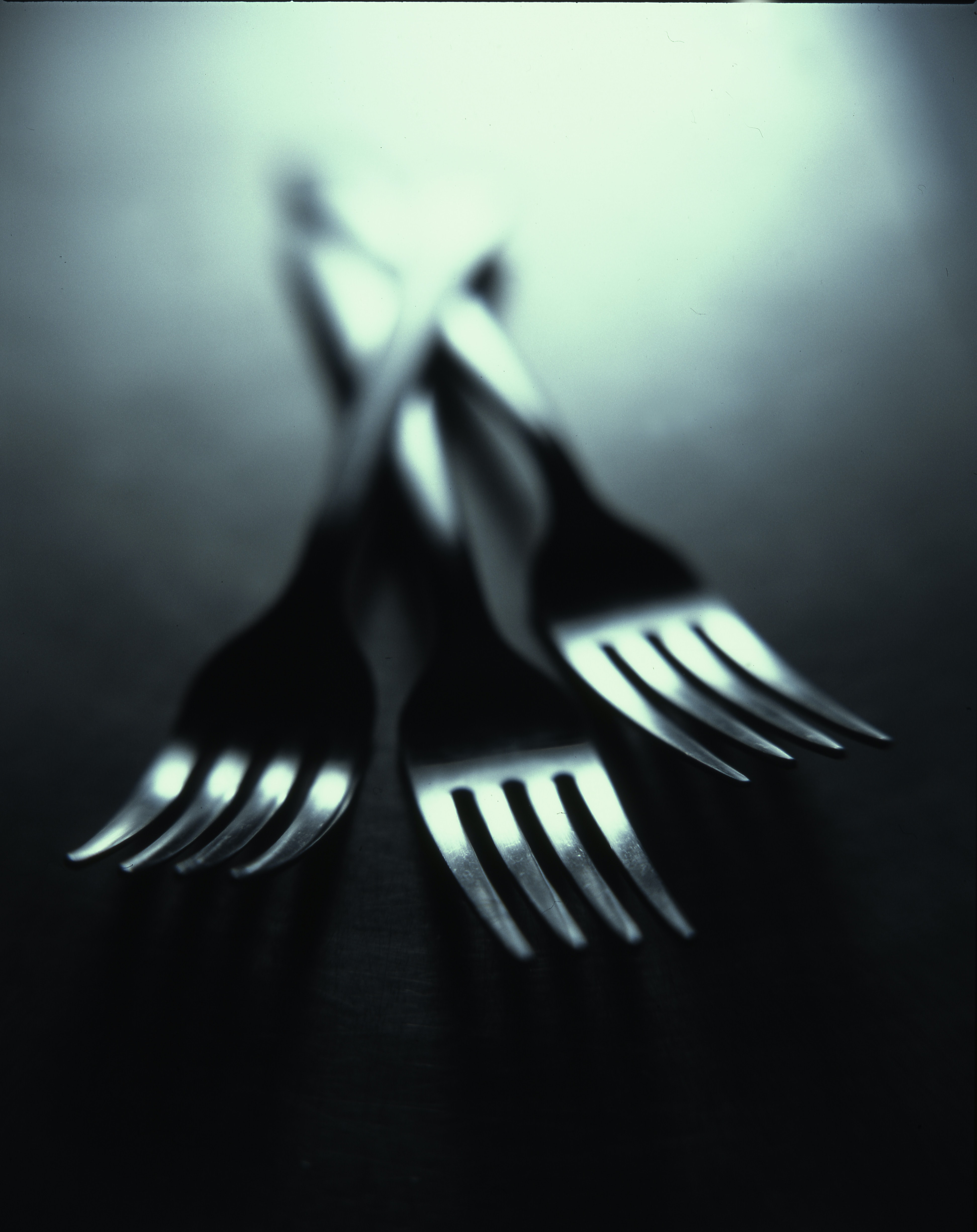 shallow focus photography of three forks