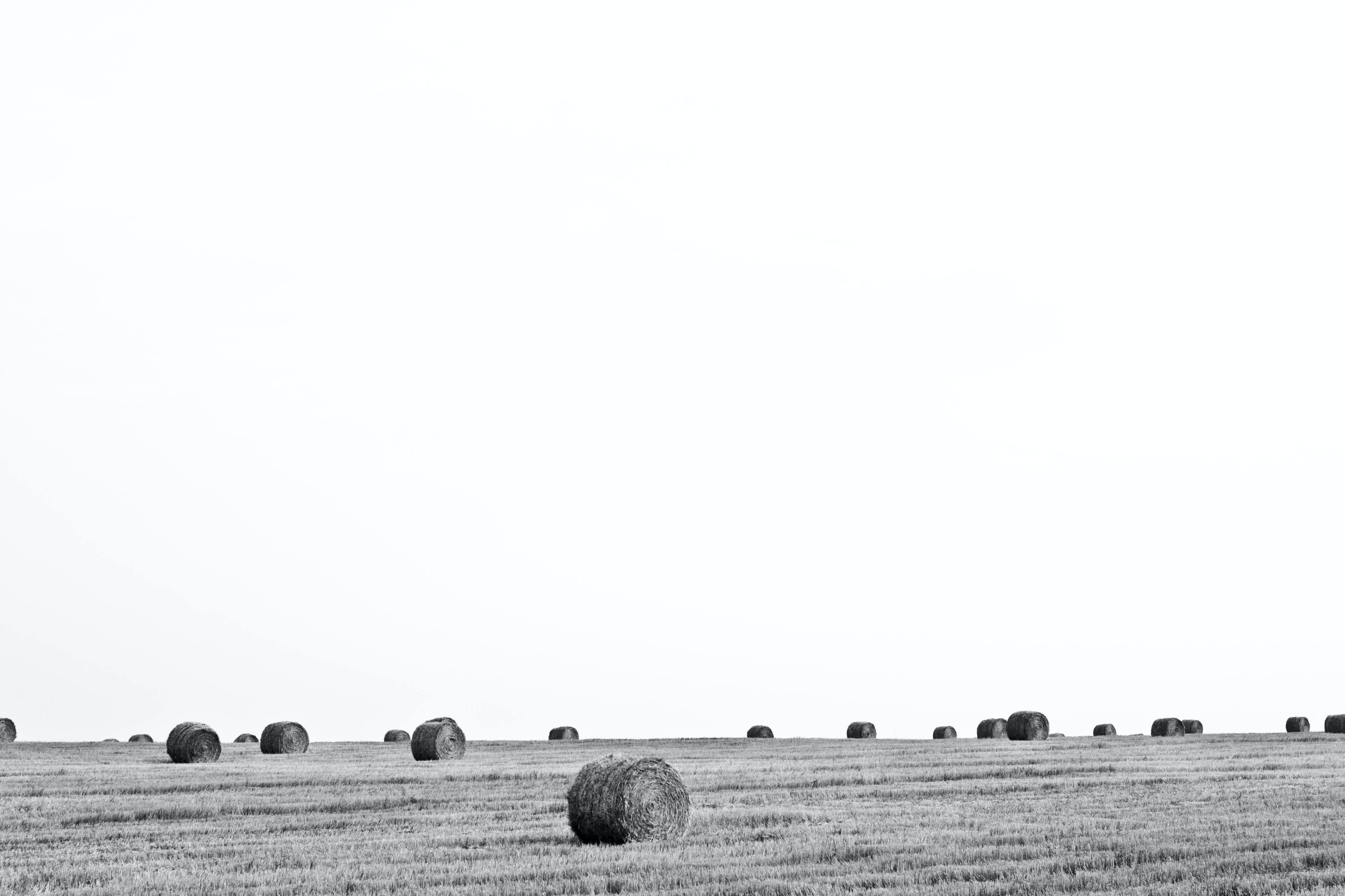 Black and white shot of farm field with hay bales and clear sky
