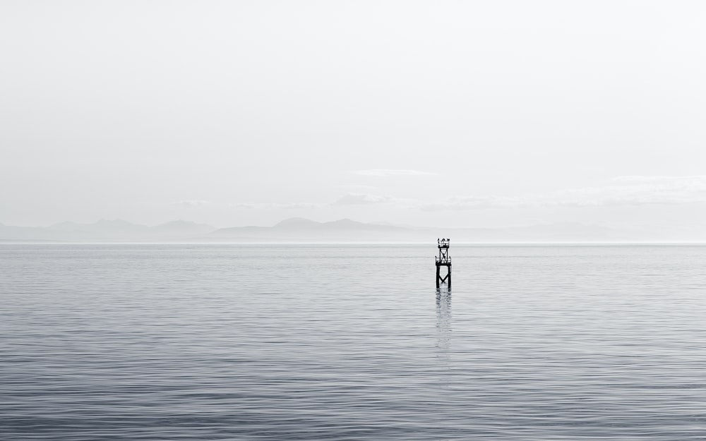 greyscale photography of post in sea