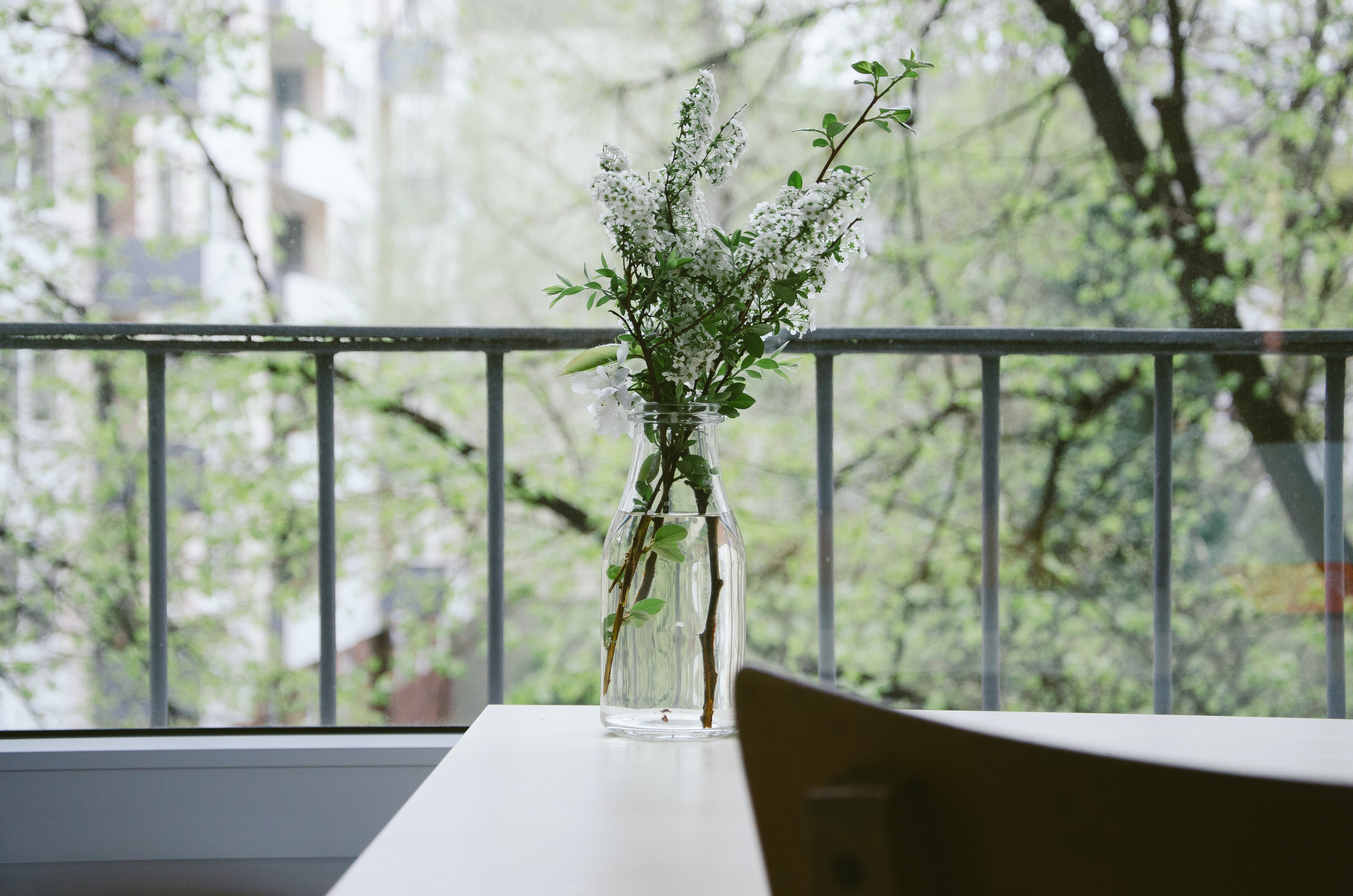 Green and white flowers in a transparent glass vase for interior decorations.