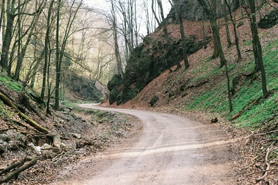 curved dirt road