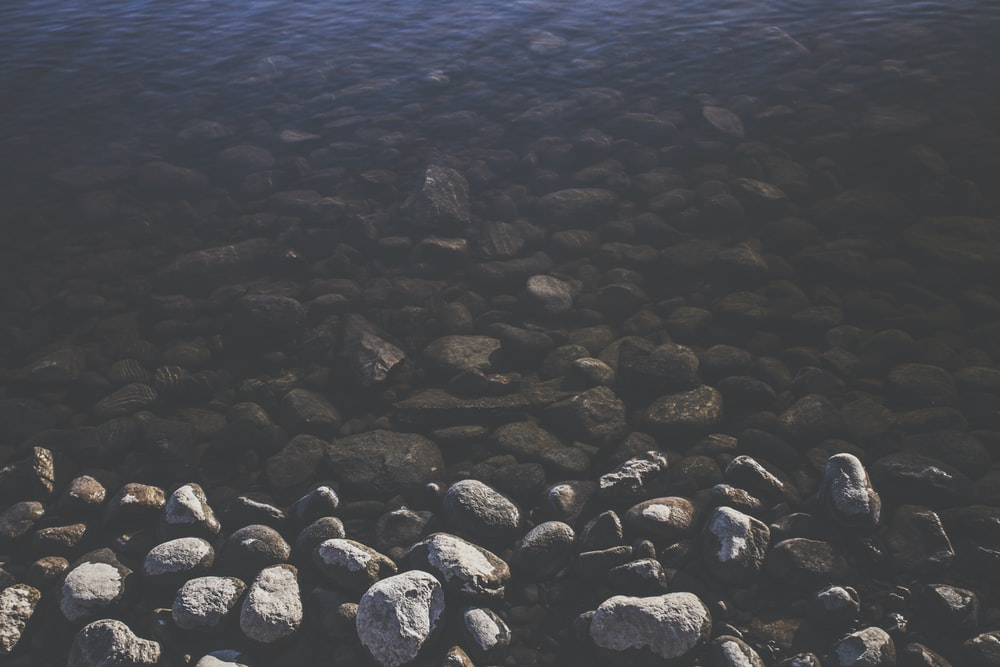 gray pebbles near river during daytime