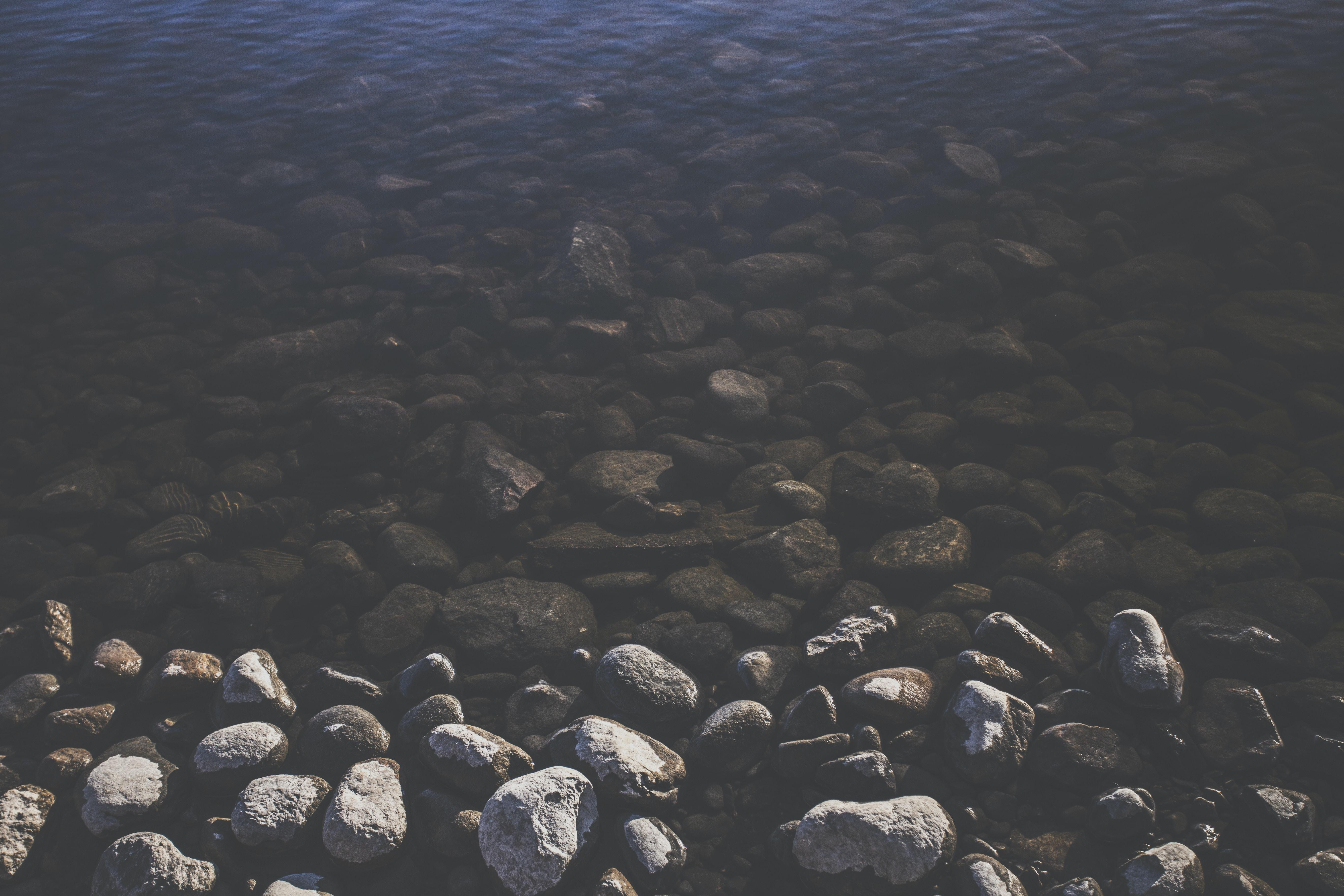 surface-level dreaming stranger stories