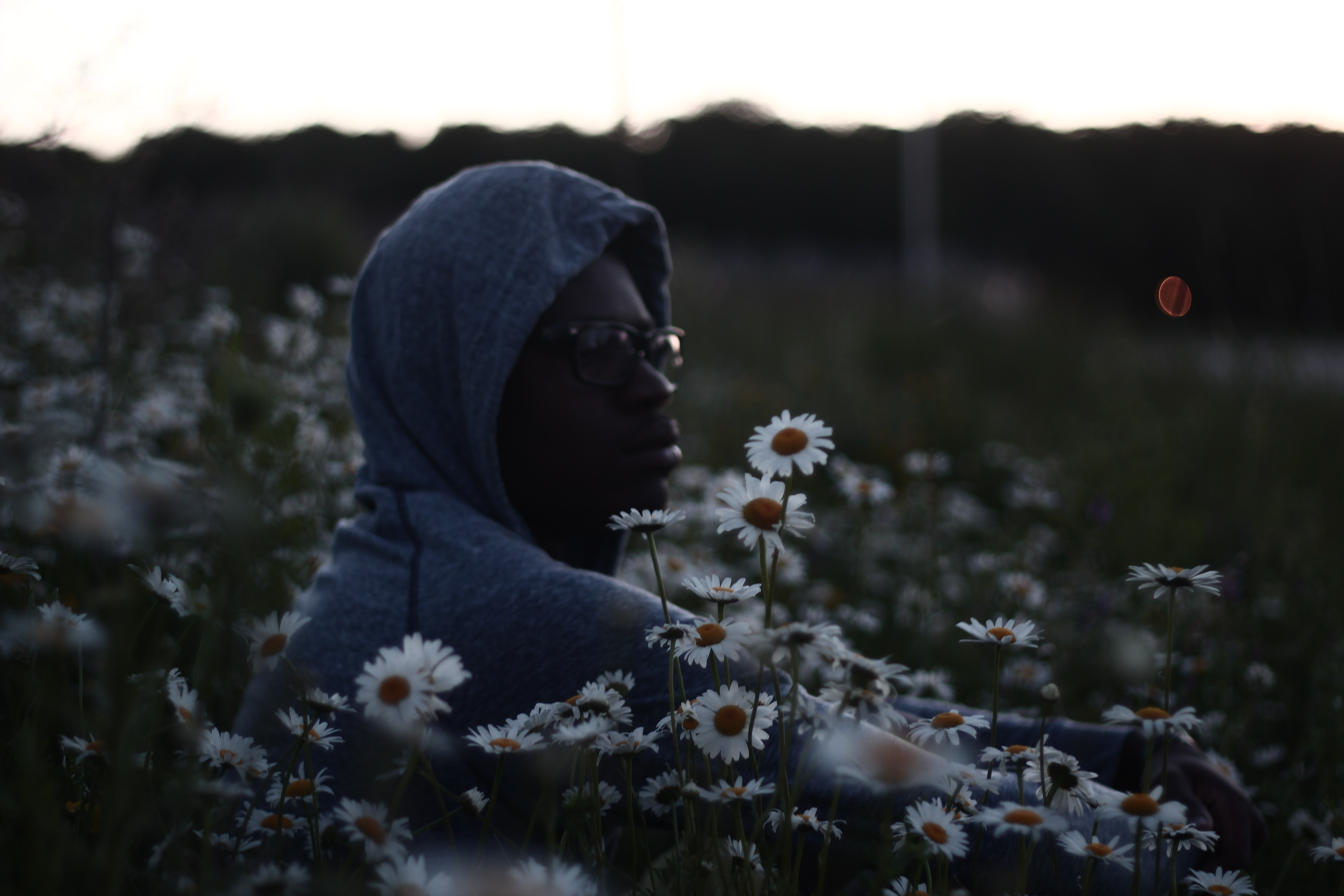 man wearing hoodie and surrounded by Daisy flowers