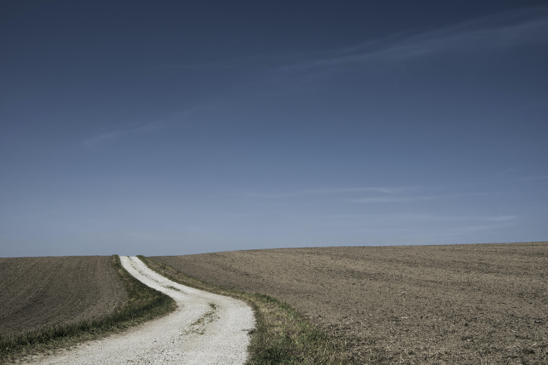 narrow road in between soil grounds