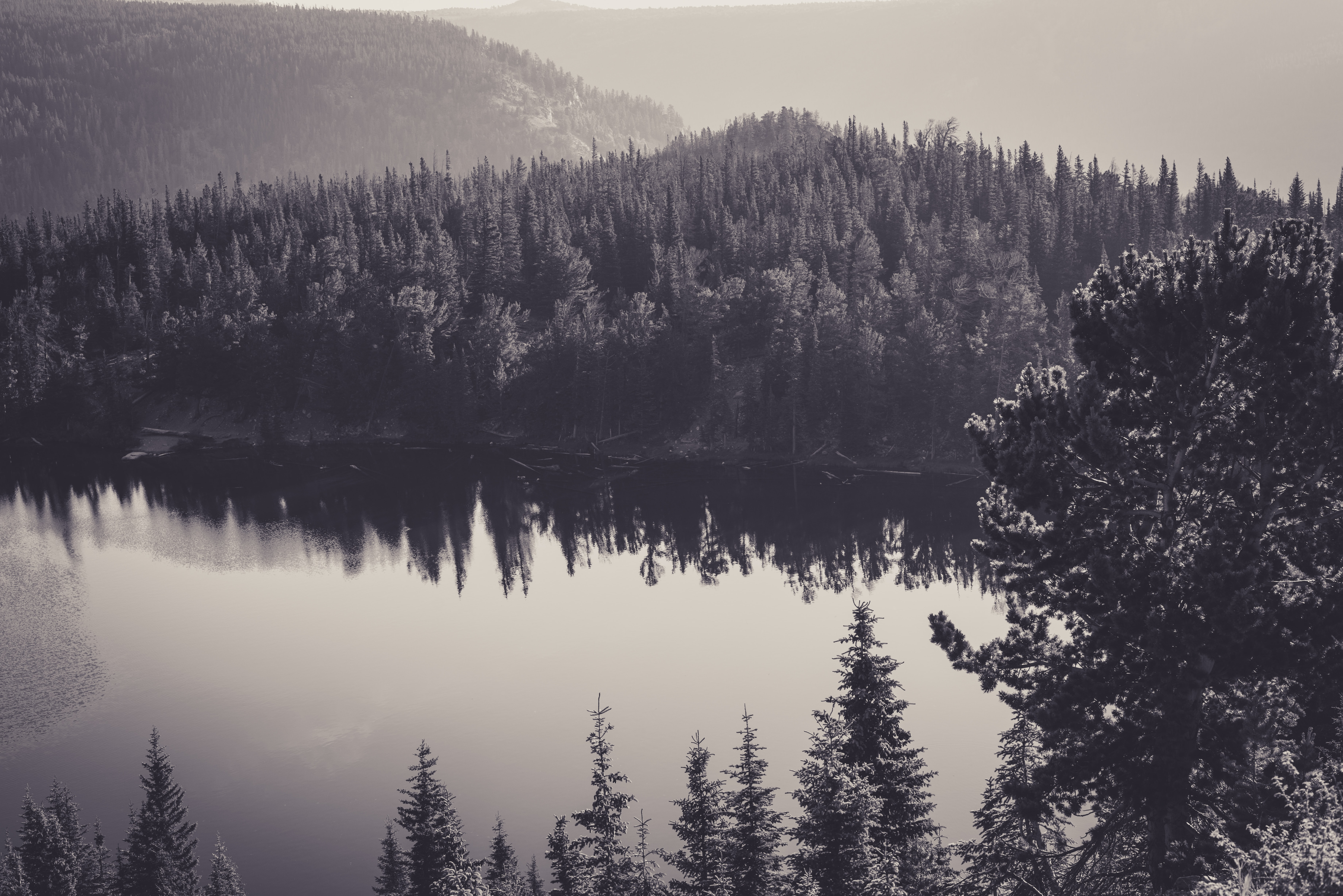 A black-and-white picture of woody hills by a lake