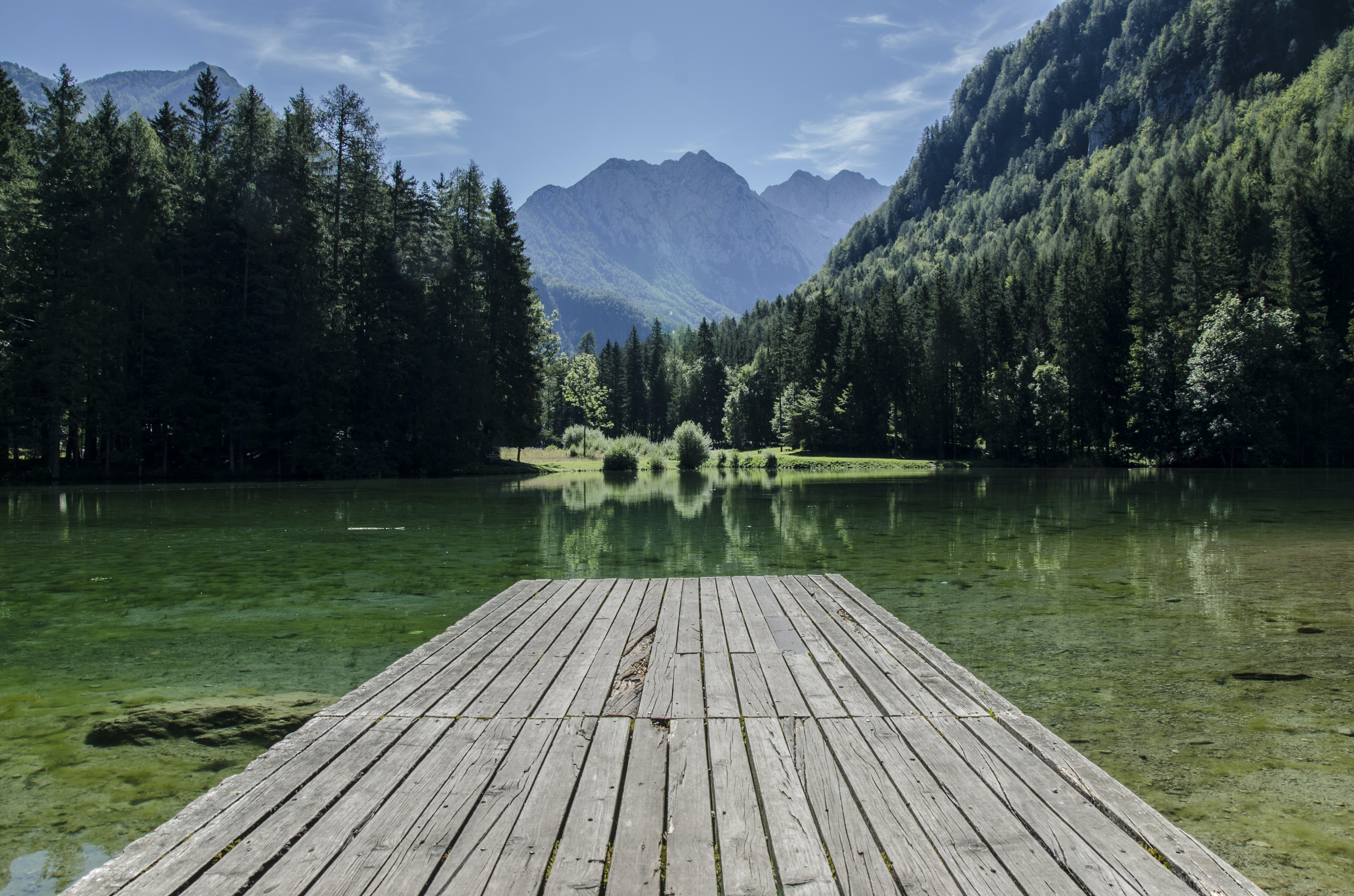 Wooded slopes rolling down to a green lake with a wooden jetty in the foreground