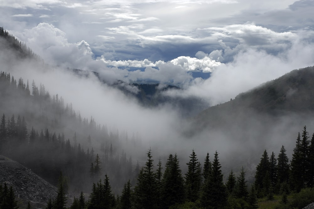 photography of mountain surrounded by fogs outdoor