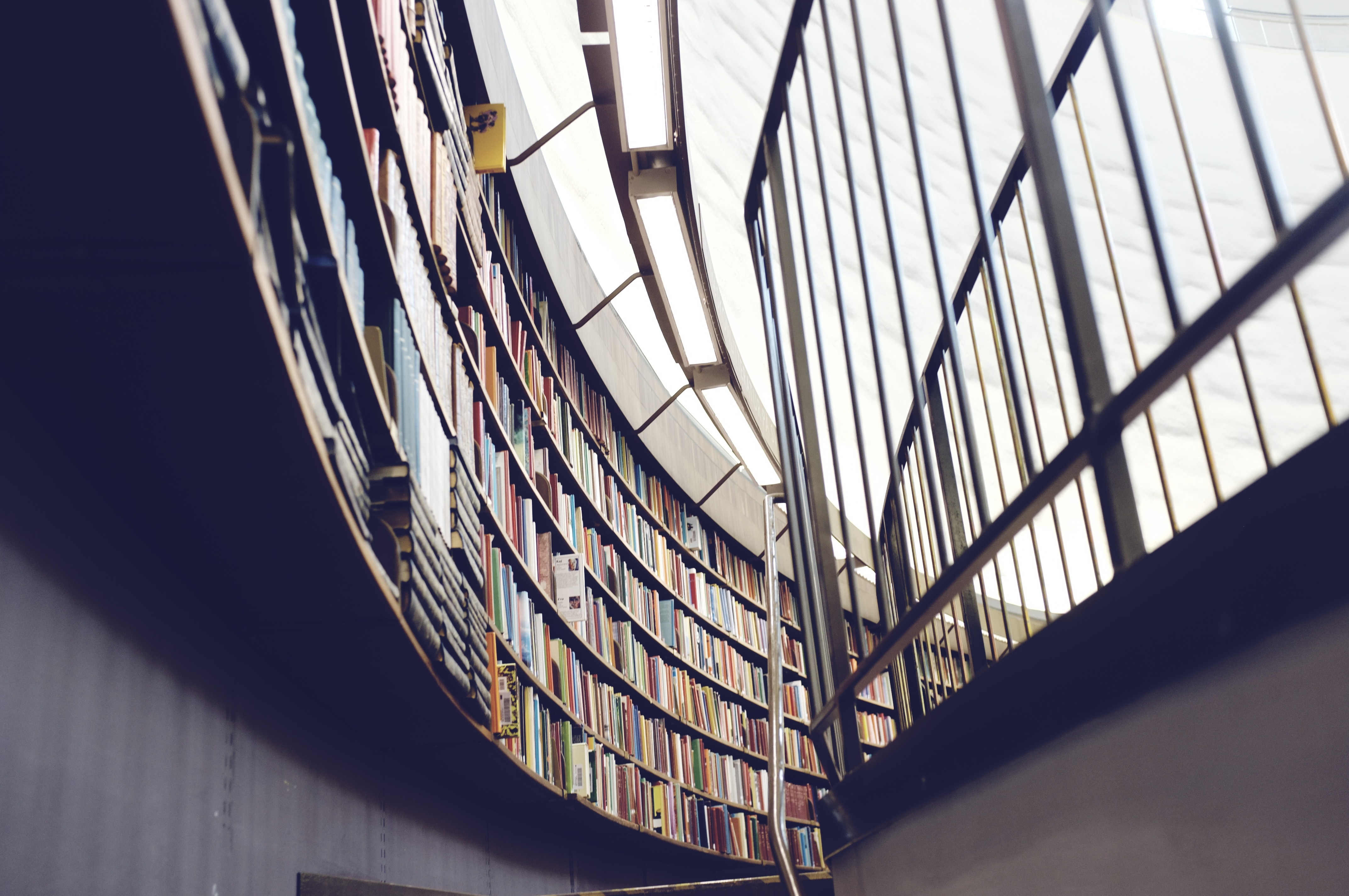 Books on shelves mounted along a curved library wall