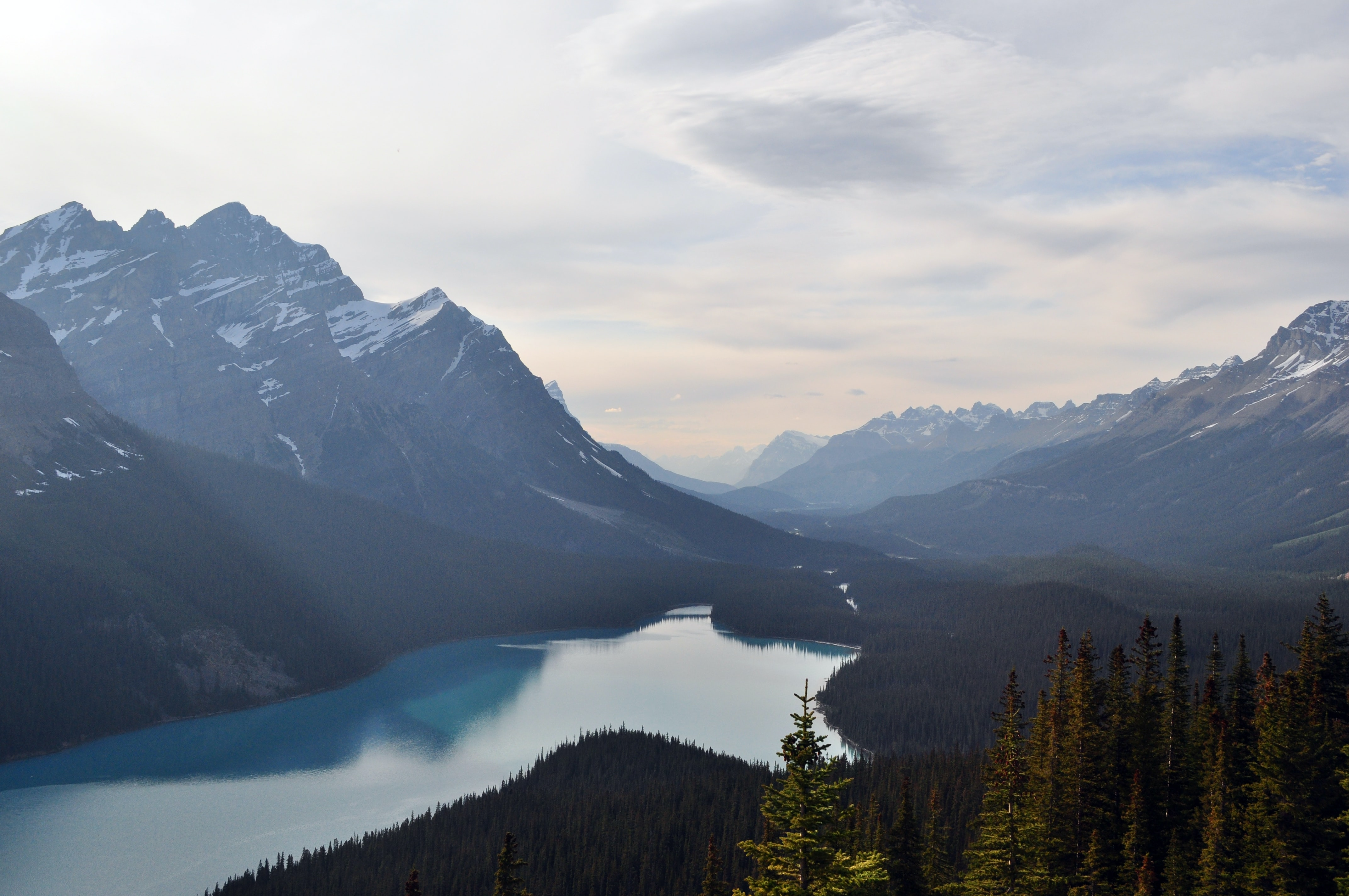 A scenic shot of the trident-shaped Peyto Lake in the Canadian Rockies