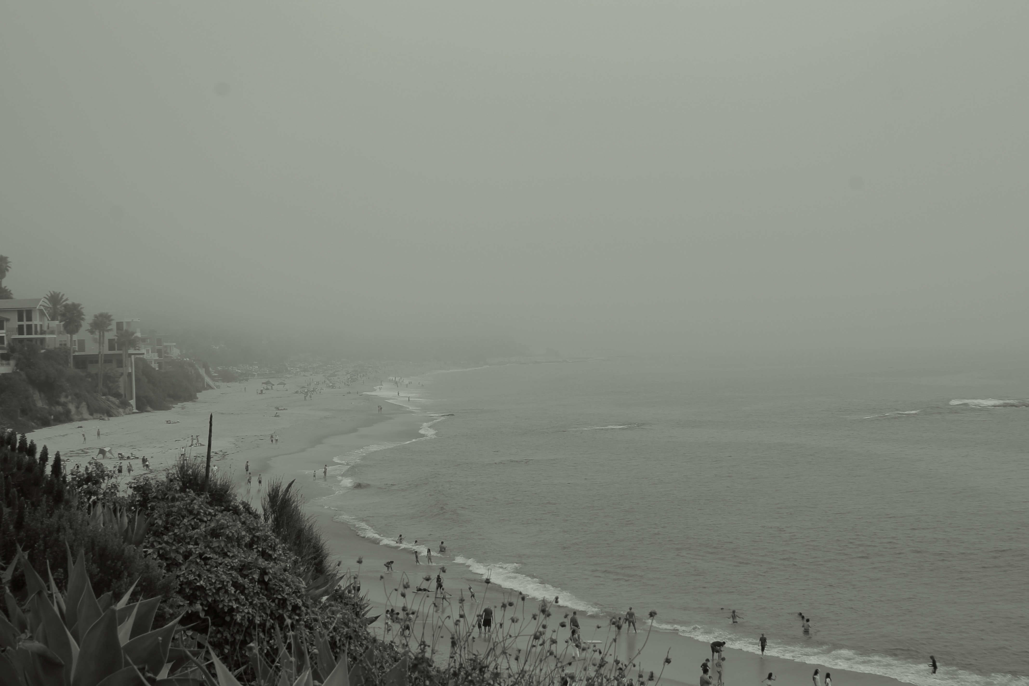 Gray seashore on a stormy day