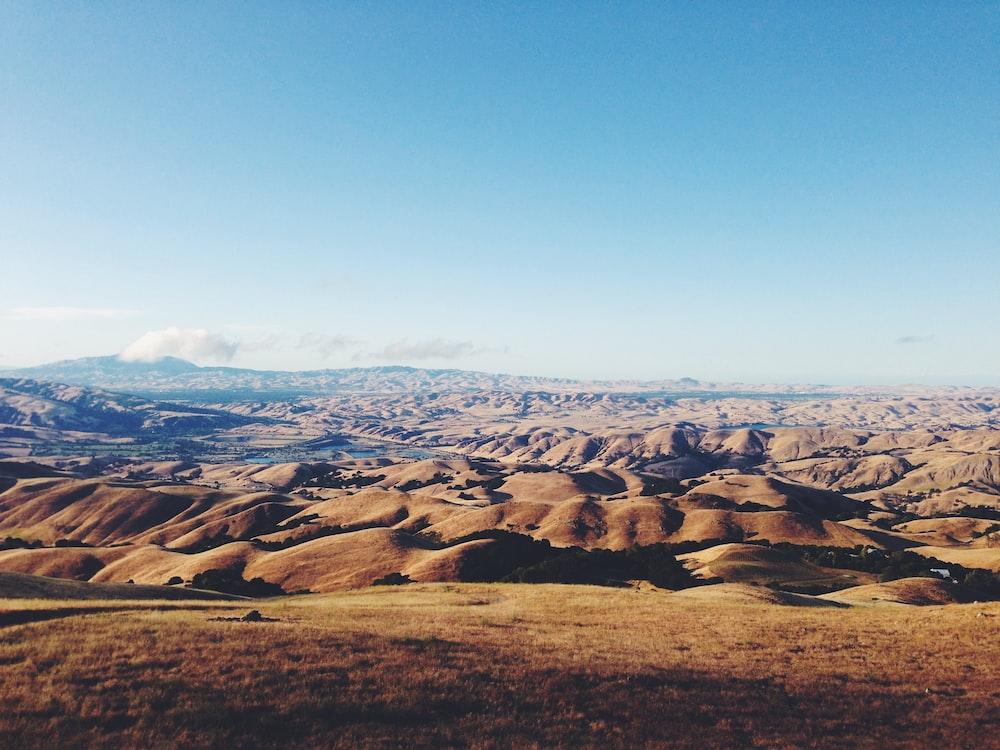 panoramic photo of sand dunes