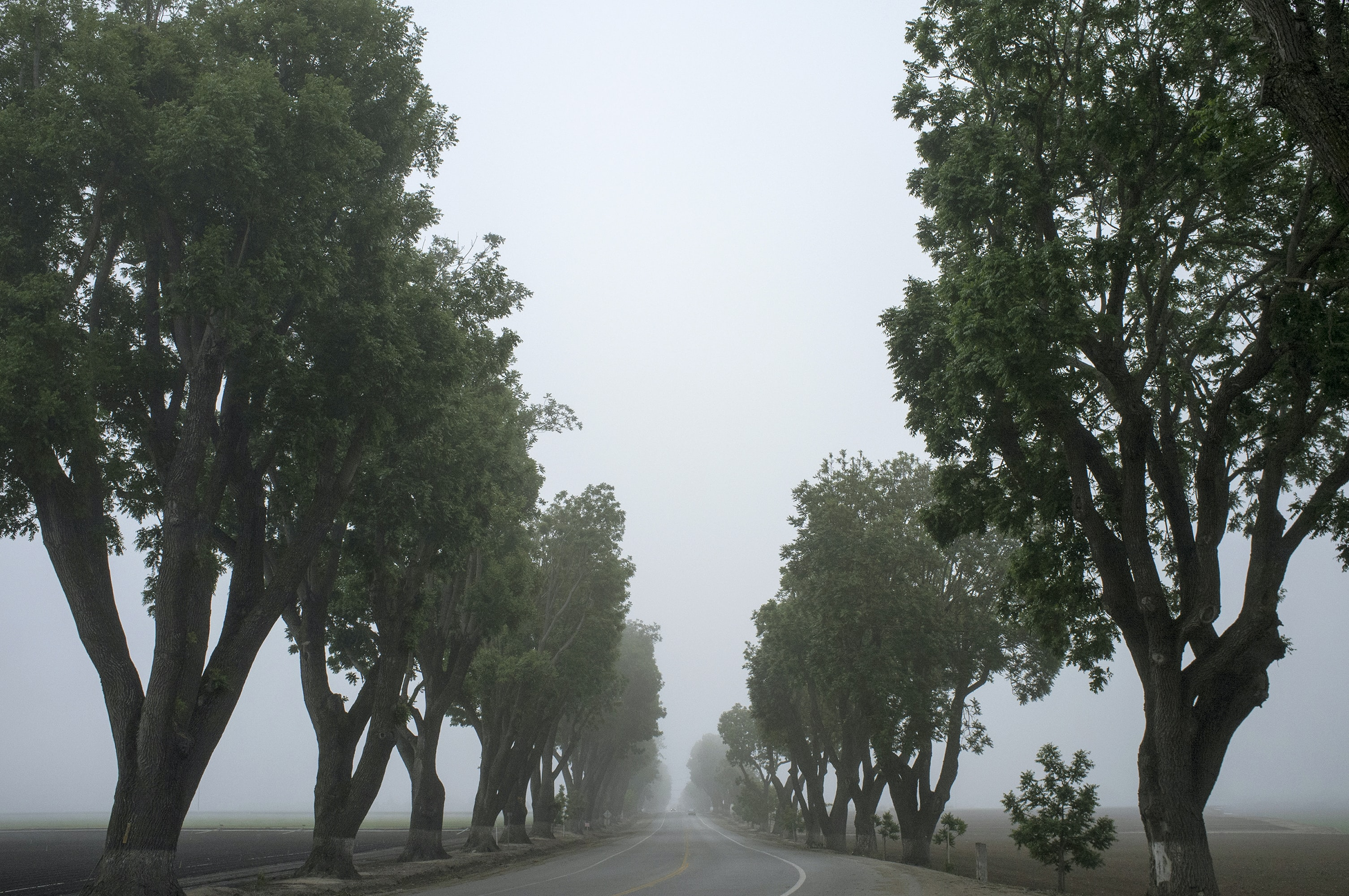 A misty sky over an isolated country road