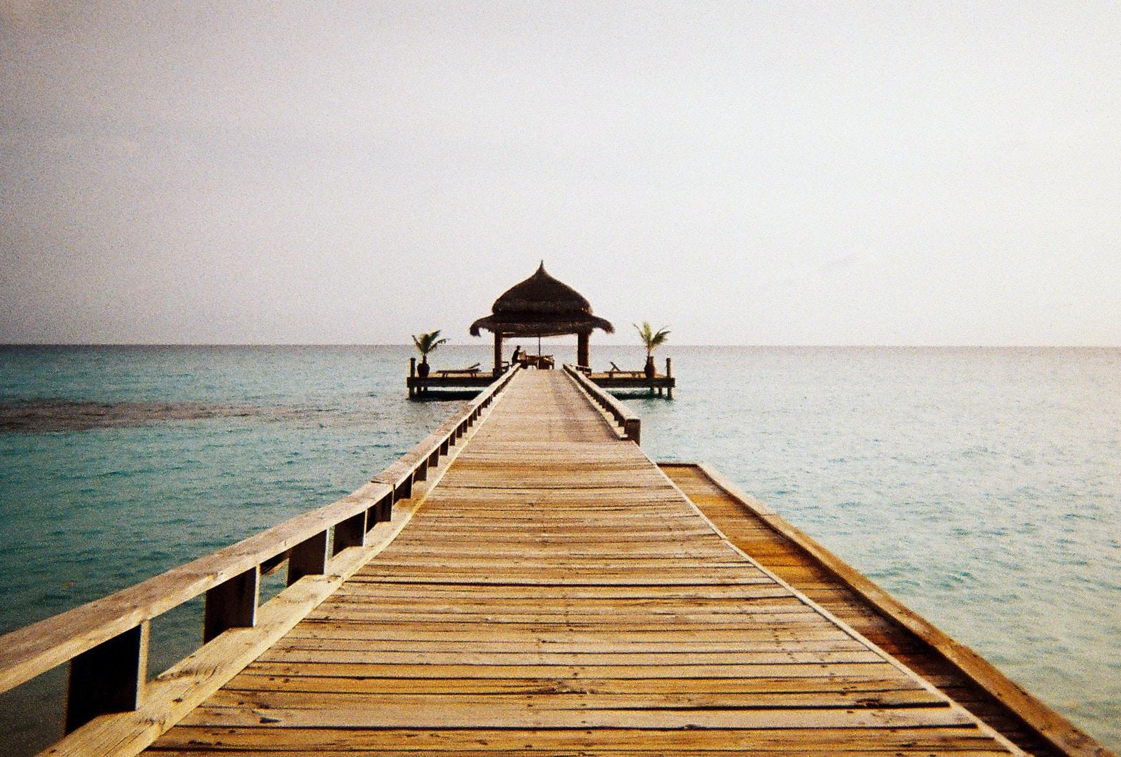 brown wooden walkway on body of water