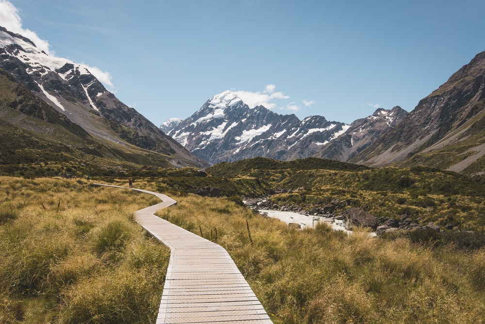 brown wooden pathway surrounded by brown field towards mountain