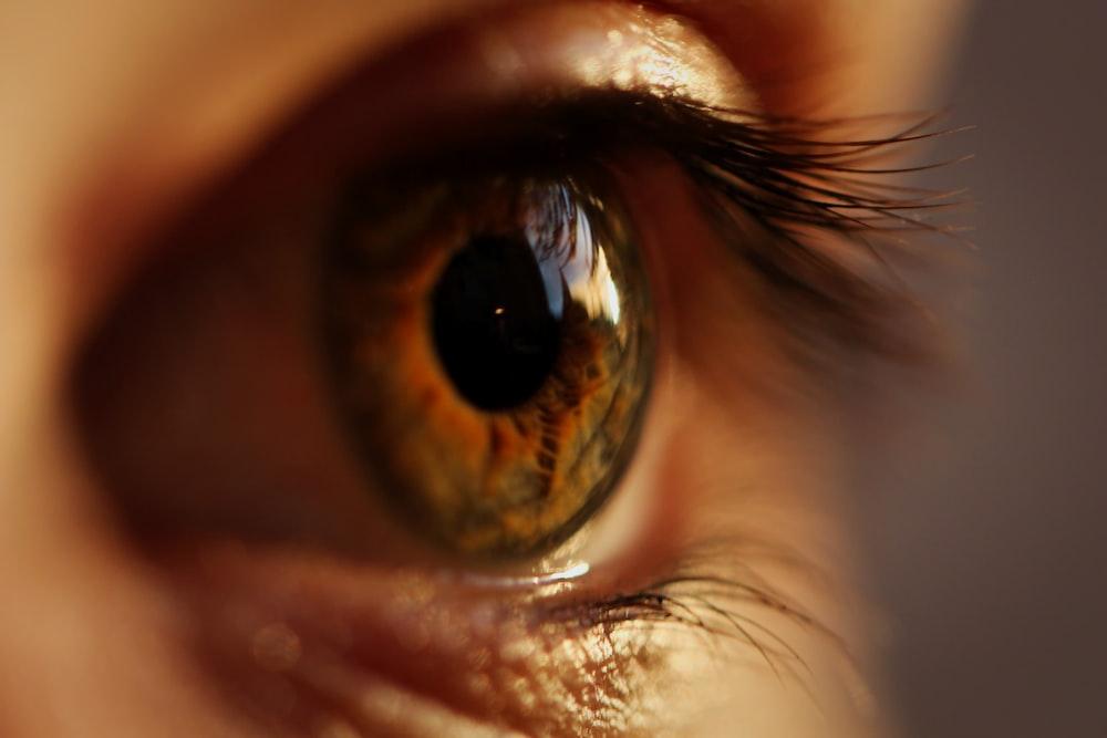yellow and gray eyeball