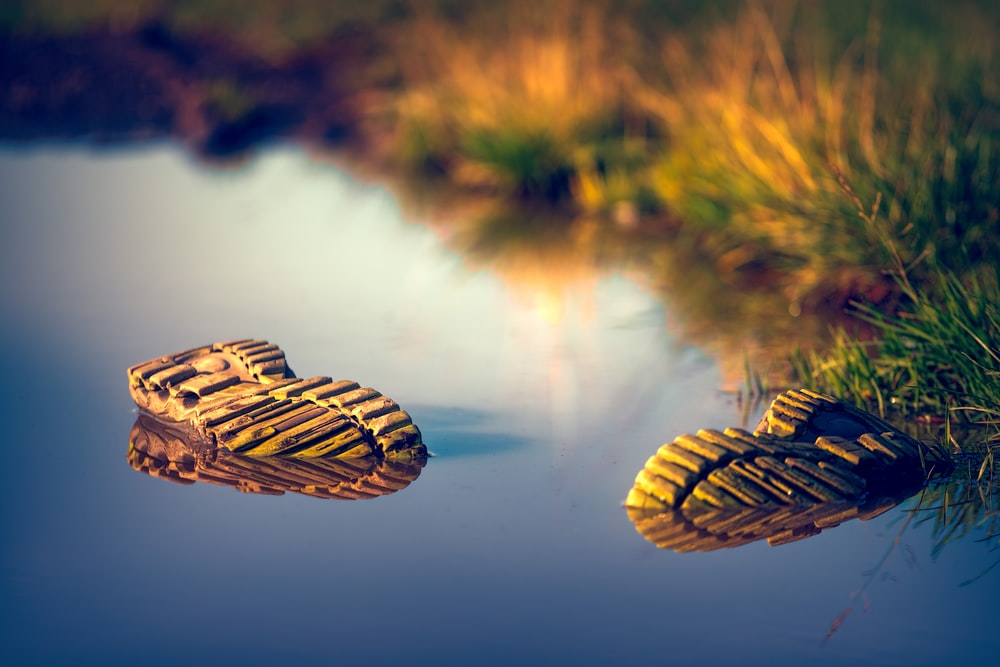 two pair of shoes in body of water