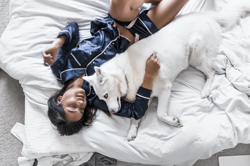 woman lying on bed with white Siberian husky