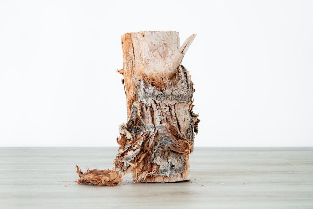 tree bark decor