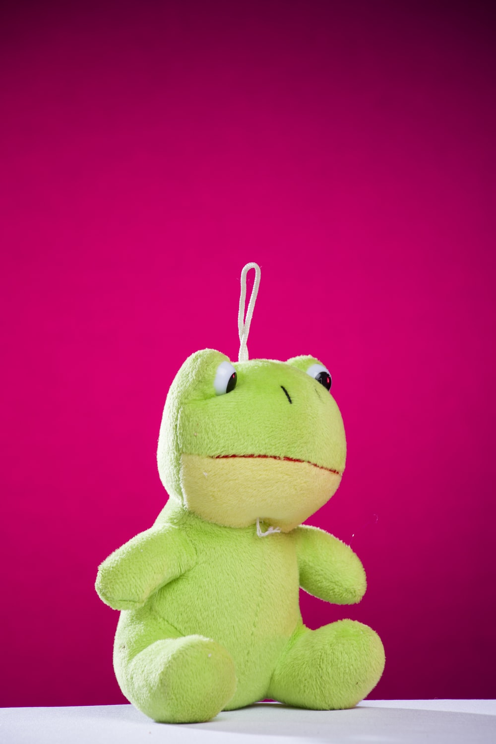 green and yellow frog plush toy