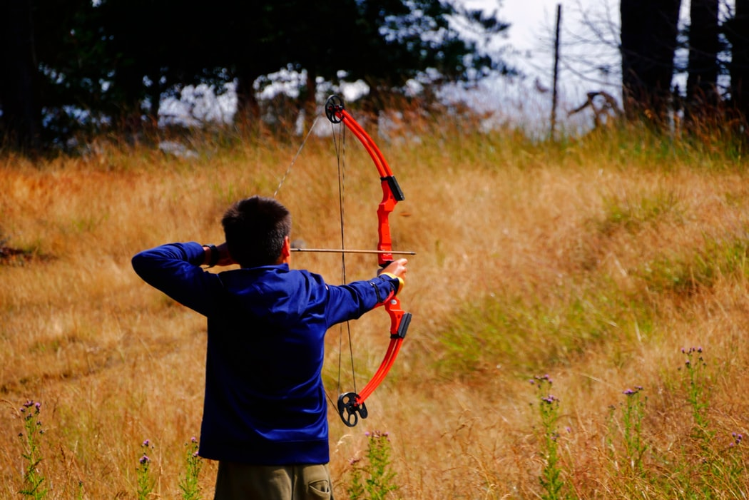 field archery training