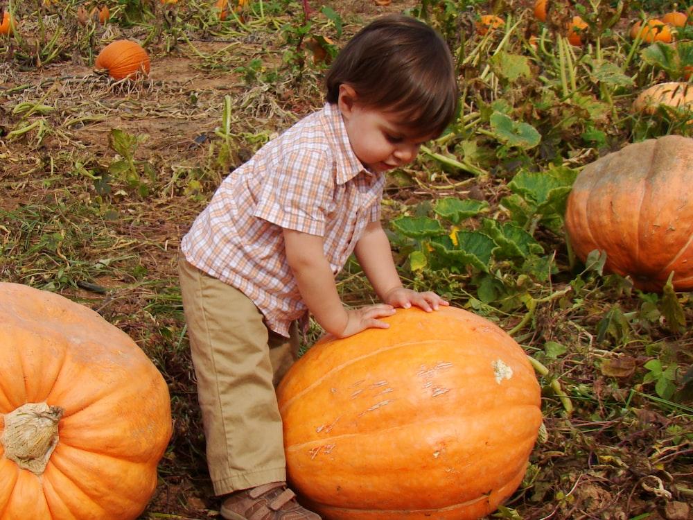 child wearing brown pants holding orange pumpkin