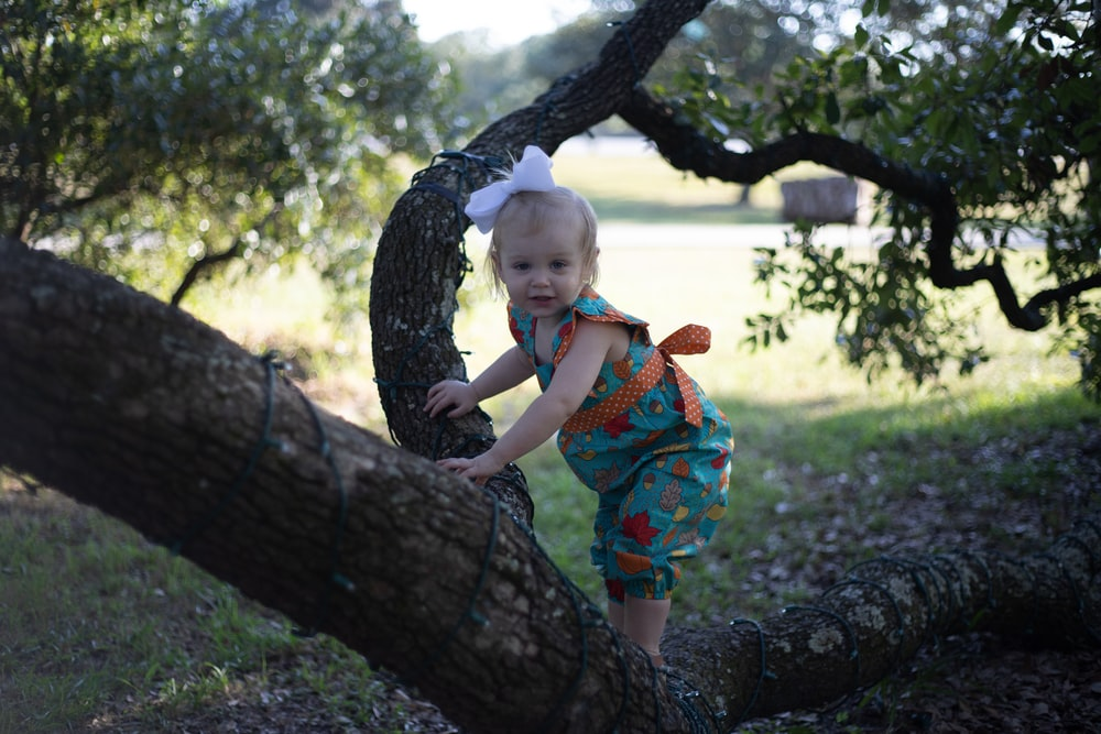 toddler climbing up a tree