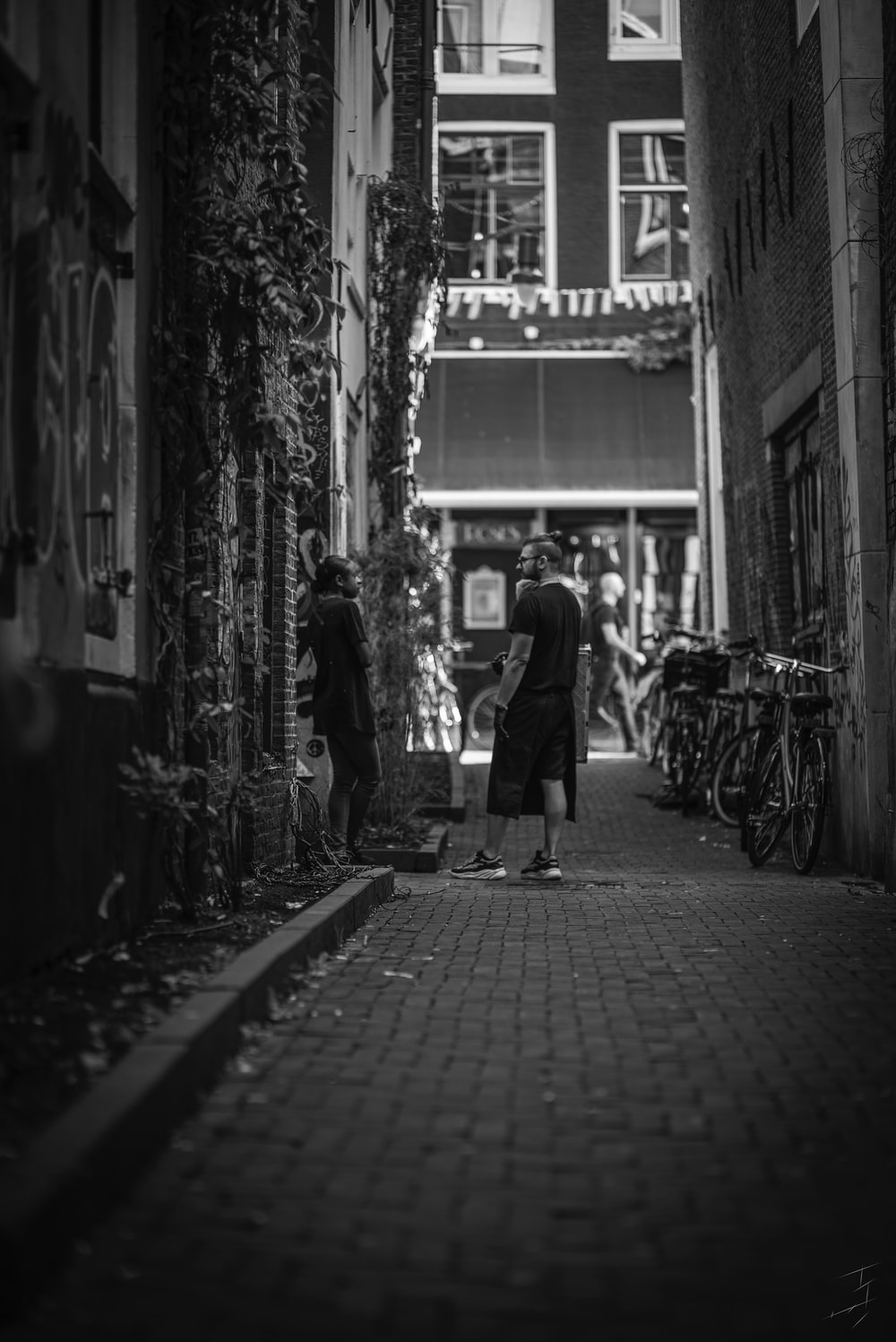 people standing on alley