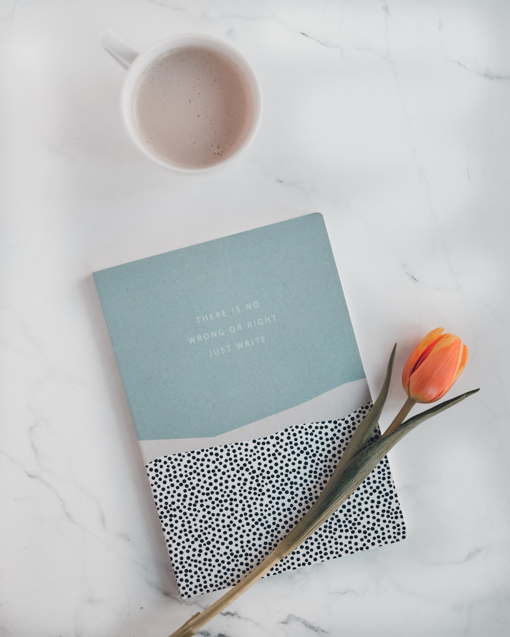 orange tulip and blue labeled book