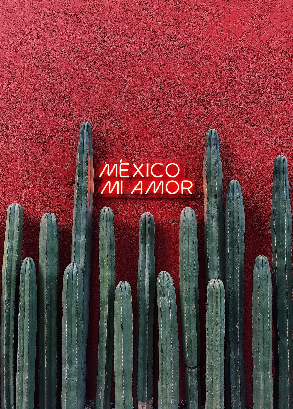 100 Stunning Mexico Pictures Scenic Travel Photos Download Free Images On Unsplash