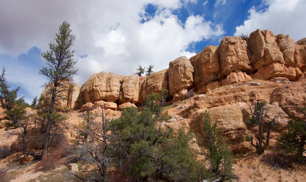 brown stone canyon