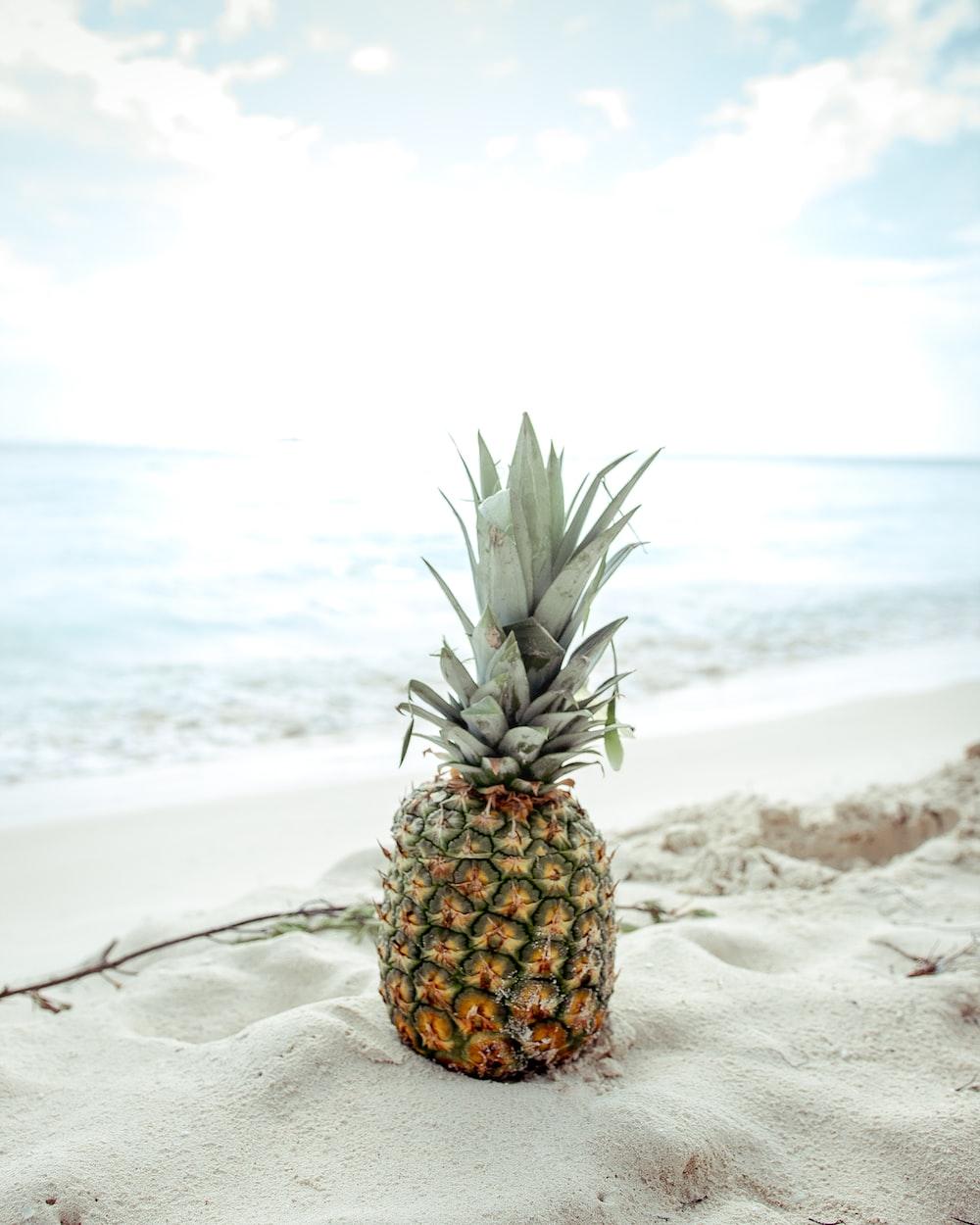 pineapple fruit on the sand