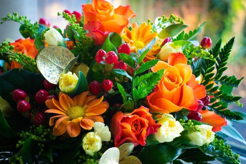 multicolored flowers in bloom