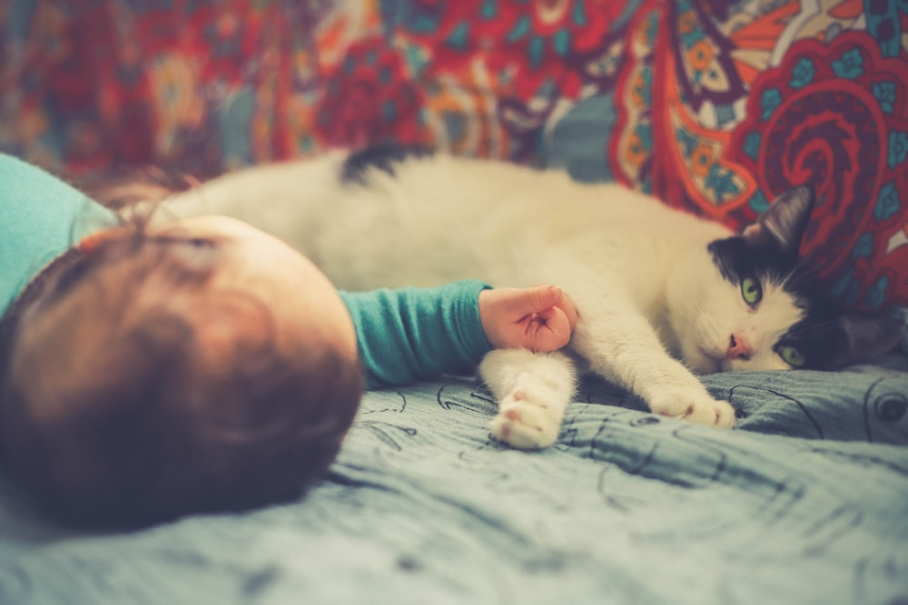 white and black cat lying beside baby