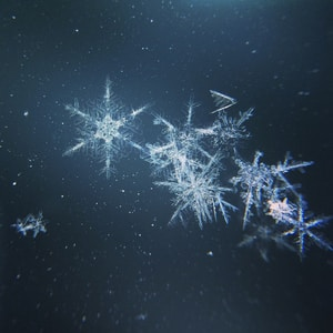 Macro Snow Flake